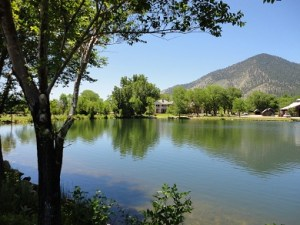 Heritage Mansion Ranch has a year-round Luther creek meandering through the trees and lawns of the ranch headquarters.