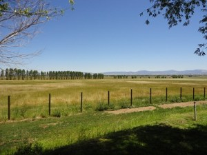 Heritage Ranch Estate has a classic, fully functional, century-old barn.
