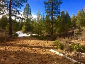 Oregon Forest Land Ranch is located approximately 60 miles south of Bend OR.