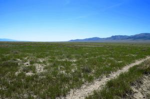 Retiring Developer is offering 960 acres of vacant land for sale in rural northern Nevada.