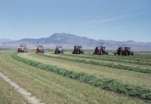 Antelope Valley Hay Farm