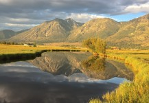 The Best of the Carson Valley ~ SOLD