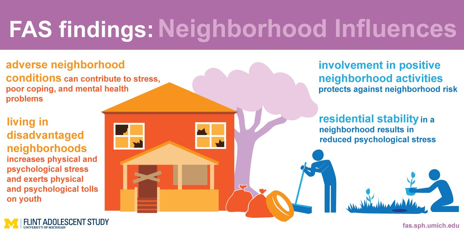 An image of the neighborhood influences findings info graphic