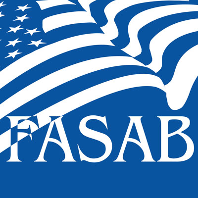 iasb equivalents of the fasb original pronouncements