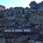 Fiestas de Hoyos de Miguel Muñoz