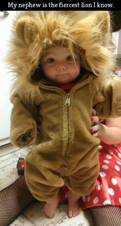 Cute baby animal costumes (22)