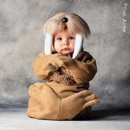 Cute baby animal costumes (51)