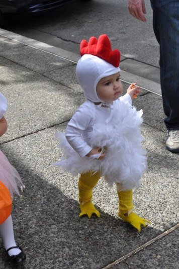 Cute baby animal costumes (63)