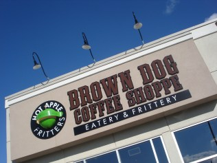 brown dog 1