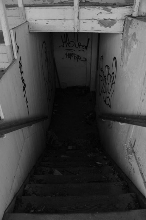 wasteland_fy_8