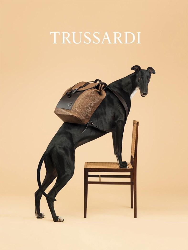 trussardi_ss14_campaign_fy3