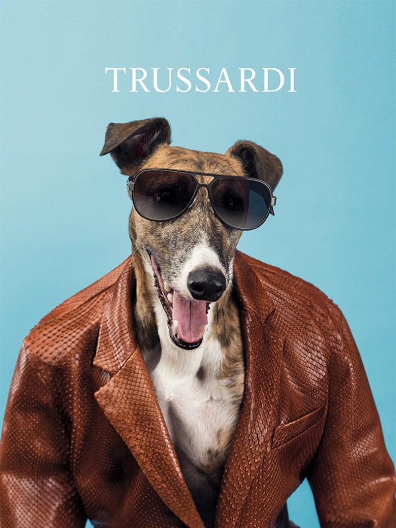 trussardi_ss14_campaign_fy4
