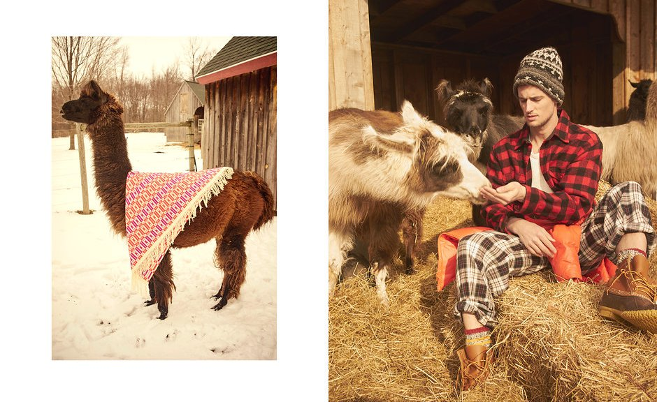 Created by People Having Fun top model Garrett Neff in Llamas and Pajamas! for Vogue USA Online, Fashion Editor by Jorden Bickham, Settings Editor Taylor Mcneill. Original story wearing pajamas and domesticated South American camelid. Set DEsign by Daniel Graff for Mary Howard Studio, grooming by David Colvin shot on location at Woodmansee Farms.