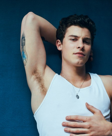 Shawn Mendes Seduces Internet with new Wonderland Magazine Pics