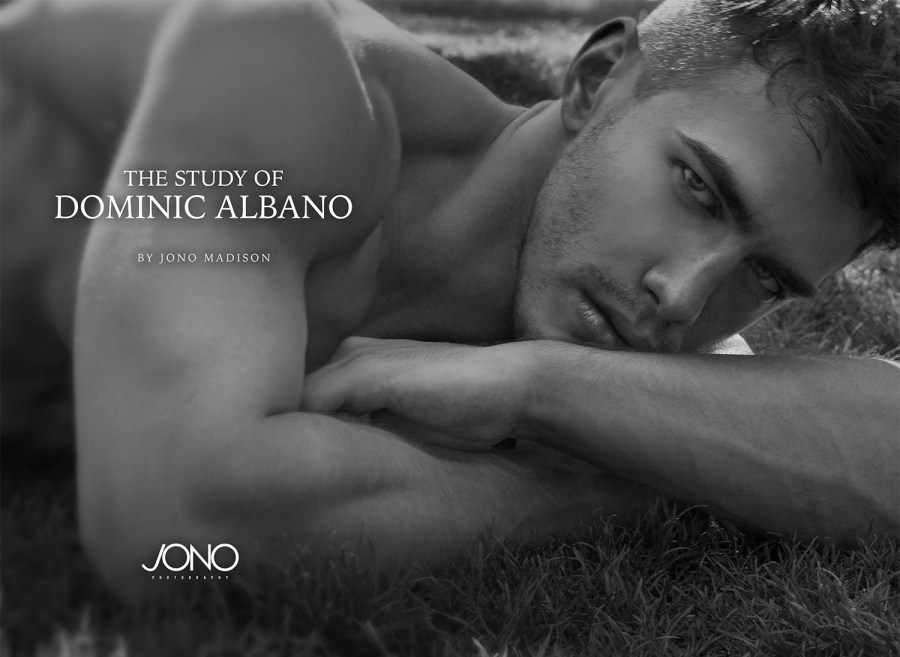 Available Now: The Study of Dominic Albano by Jono Madison