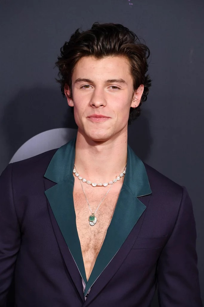 Shawn Mendes Hot Jewelry in 2021