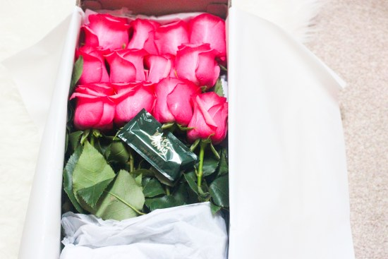 Bright Pink Roses Image