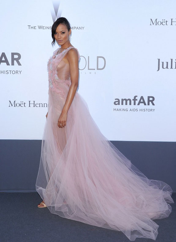 Selita-Ebanks-amfARs-Cinema-against-aids-gala-tulle-gown