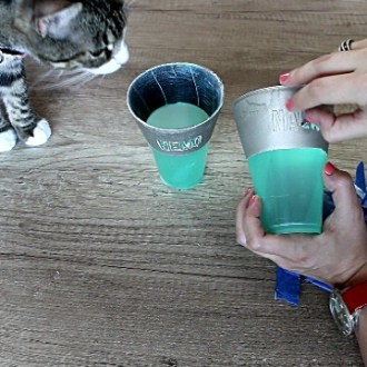 DIY Projects for Cats Cat Water Cup Stand