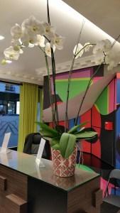 Christian Lacroix, Hotel Antoine