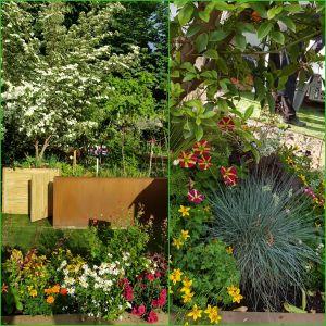 Jardins, Jardin aux Tuileries Paris - 2018