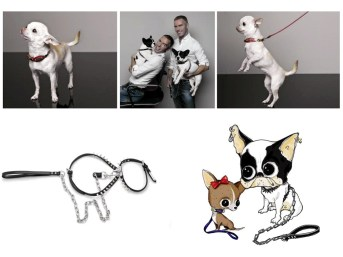 2-dsquared2-for-dogs-on-fashiondailymag.com-brigitte-segura