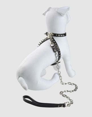 DSQUARED2-HARNESS-LEASH-SET-in-BLACK-we-still-love-boys-on-fashiondailymag.com-brigitte-segura-
