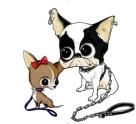 Dsquared2-for-DOGS-on-www.fashiondailymag.com-brigitte-segura
