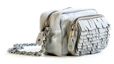 2425_Carter-Light-SWAY-bag-on-Fashion-Daily-Mag
