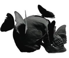 skull style philippe pasqua FashionDailyMag