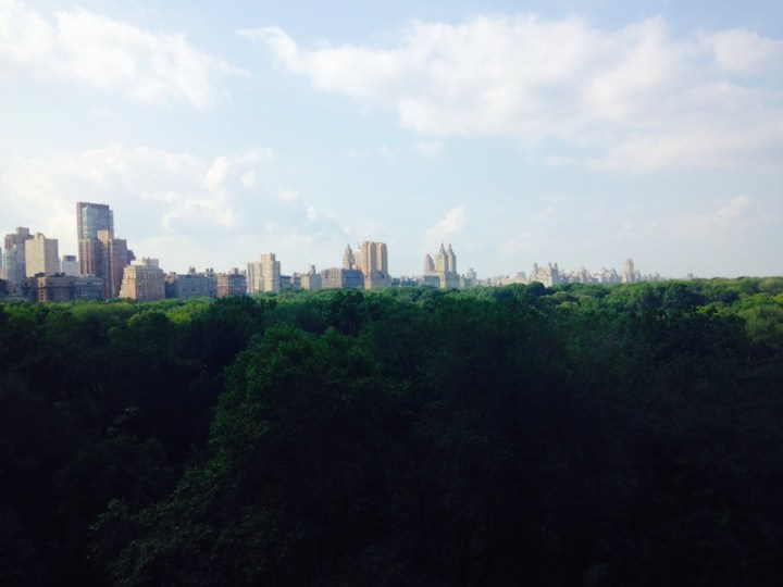 view from Dr. Rosen Plastic surgery group NYC FashionDailyMag