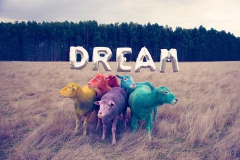 dream multicolor GRAY MALIN dream series FashionDailyMag