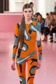 DIOR fall 2015 PFW highlights FashionDailyMag sel 83