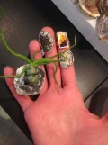E SHAW jewelry brigitte segura FashionDailyMag sel 46