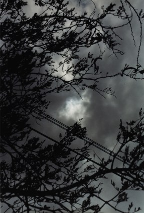 Wolfgang Tillmans, Eclipse 2-3, 1998
