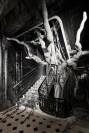 DIOR_HAUTE COUTURE_AUTUMN-WINTER 2019-2020_SCENOGRAPHY_© Adrien Dirand_1 FashionDailyMag brigitte segura curator