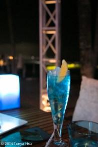 W Hotel Starfish Bloo