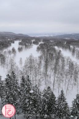 Travel - Hokkaido Hilton Niseko Village Hotel ski resort view