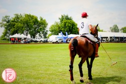 polo for heart 2015 at toronto polo club