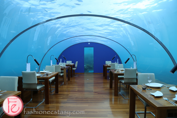 conrad maldives ithaa undersea restaurant馬爾地夫(馬爾代夫)康萊德酒店Ithaa海底餐廳