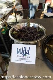 Evergreen Brick Works Wild Blueberry Festival 2017
