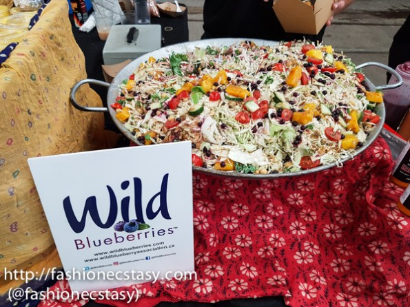 evergreen brick works annual Wild Blueberry Festival Toronto