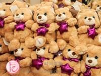 Starlight Children's Foundation Tea and Tiaras Fundraiser 2019 Toronto - Starlight bear
