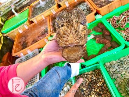 """富基漁港活海產餐廳 - 「戰車龍蝦」($18000 - $2400) Fuji Fishing Port's """"slipper lobster """" ($1800nt - $2400nt)"""