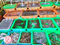 富基漁港活海產餐廳 - Fuji Fishing Port New Taipei Seafood restaurant