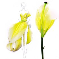 fashion-illustrations-flower-petals-grace-ciao-2