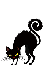 Black cat with arched back