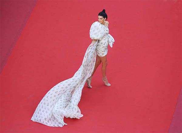 Red Carpet Looks Cannes Film Festival 2017