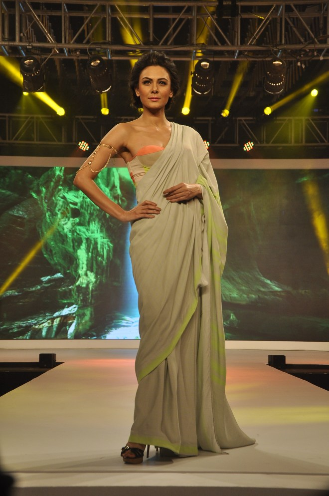 Puja Nayyar's collection Depicting Earth