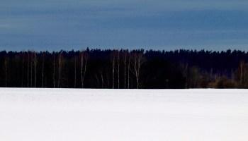 Eesti_lipp